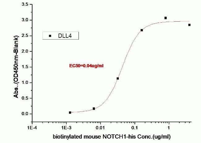 ELISA for binding activity of Delta-Like 4 (DLL4)