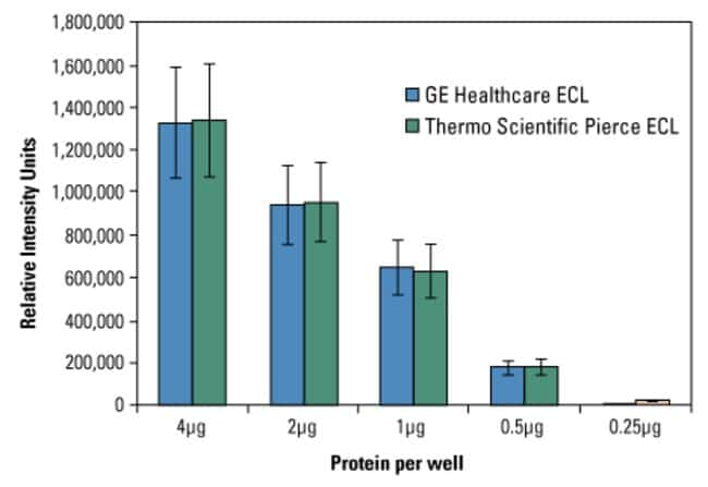 Signal intensity of ECL Western Blotting Substrate is comparable to GE Healthcare ECL Substrate