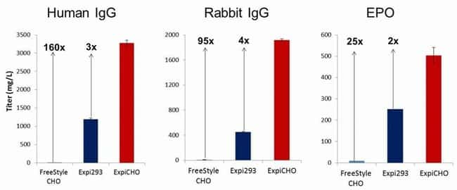 Protein yield in ExpiCHO compared to FreeStyle CHO and Expi293 cells