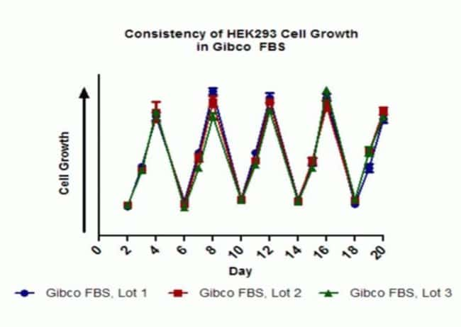 HEK293 cells were grown in DMEM basal medium (Gibco SKU 10564) supplemented with 10% Certified FBS (Gibco SKU 16000) and 1% NEAA (Gibco SKU 11140). Cells were seeded at 5,000 cells/well in 100 µL medi