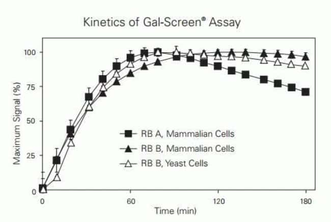 Assay kinetics of Gal-Screen ß-Galactosidase Reporter Gene assay systems