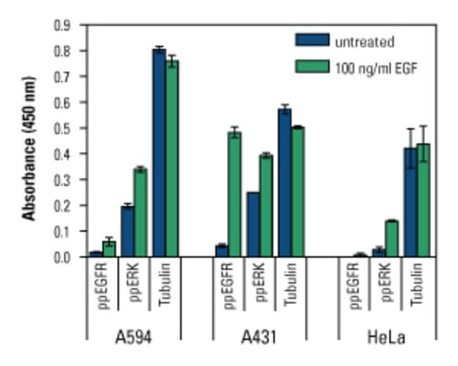 Multiplex analysis of targets in multiple cell lines using the In-Cell ELISA Colorimetric Detection Kit