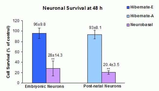 Figure 3: Neuronal Survival at 48h: