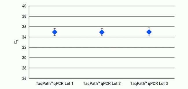 Figure 4. Reliable low copy detection