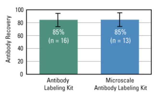 DyLight Antibody Labeling Kits provide outstanding recovery
