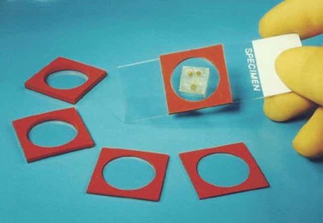 CoverWell Imaging Chamber Gaskets I