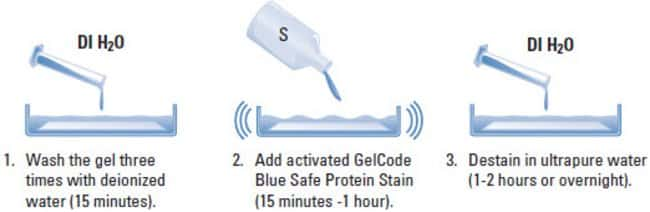 Protocol summary for the GelCode Blue Safe Stain