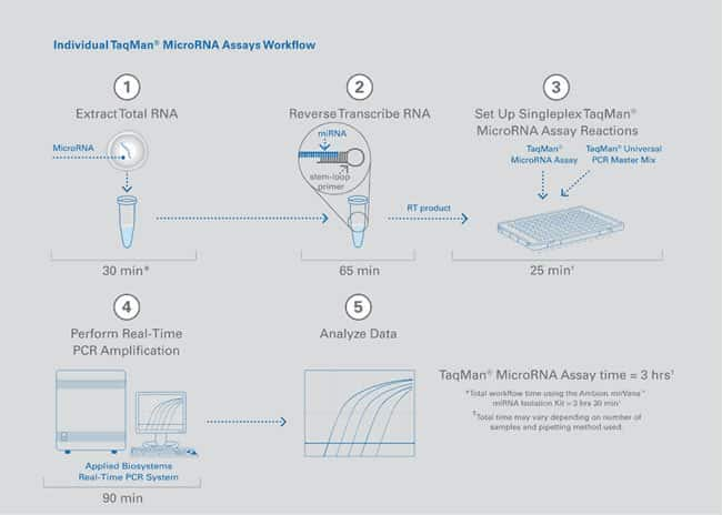 RT-PCR is step 2 in the workflow for TaqMan® MicroRNA Assays.