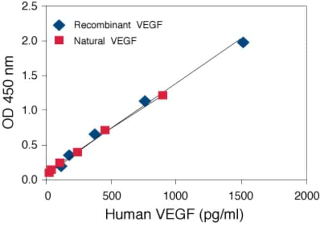 Human VEGF ELISA. Linearity of Dilution. Human serum and tissue culture medium containing 10% fetal calf serum were spiked with human VEGF and serially diluted in Standard Diluent Buffer over the rang