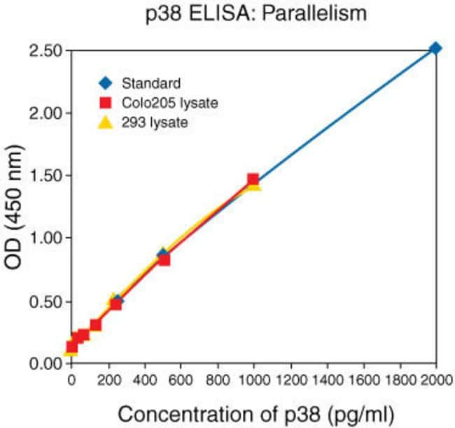 Natural p38 MAPK from human colo205 and 293 cell lysates were serially diluted in Standard Diluent Buffer. The optical density of each dilution was plotted against the p38 MAPK standard curve. Paralle