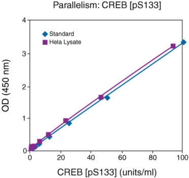 Natural CREB [pS133] from Forskolin treated HeLa cell lysate was serially diluted in Standard Diluent Buffer. The optical density of each dilution was plotted against the CREB [pS133] standard curve.