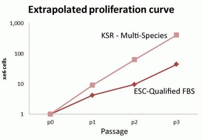 Human PSC growth in KSR – Multi-Species vs FBS