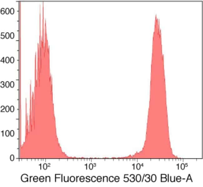 Flow cytometric analysis of Jurkat cells labeled with the LIVE/DEAD® Fixable Green Dead Cell Stain Kit.