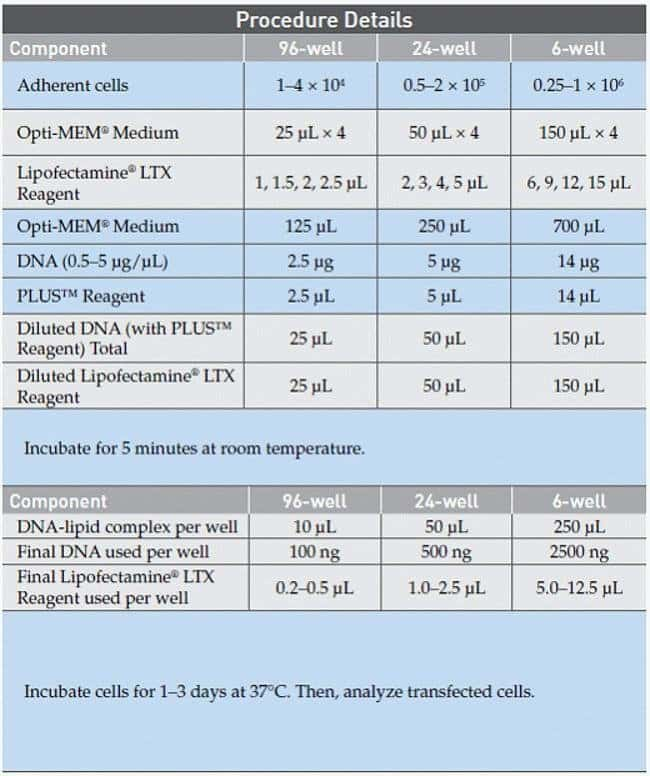 Lipofectamine® LTX Transfection Procedure Details