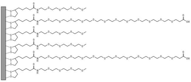 Modification of metal surfaces with ML(PEG)4 and CL(PEG)12 pegylation reagents