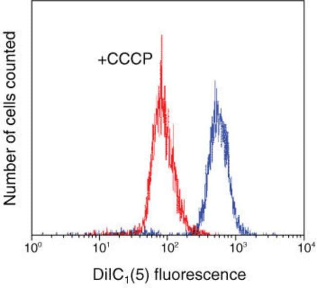 MitoProbe™ DiIC1(5) Assay Kit Decrease in mitochondrial membrane potential as demonstrated with DiIC1(5) fluorescence due to the addition of carbonyl cyanide 3-chlorophenylhydrazone (CCCP). Jurkat cel