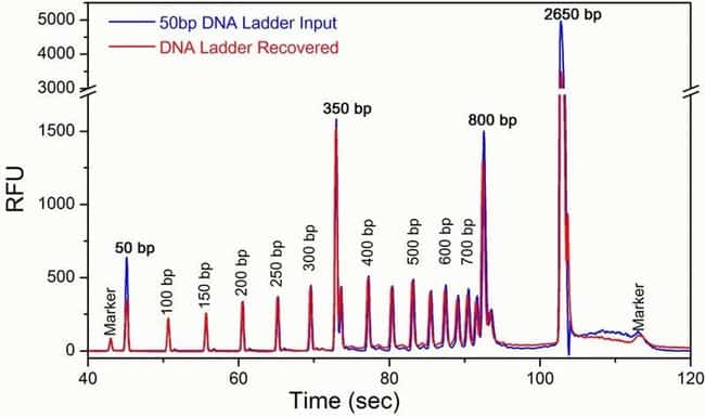 Efficiency of short DNA recovery