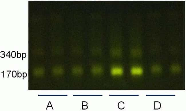 Reproducibility of cfDNA recovery