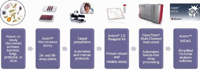 Figure 1: Axiom Microbiome Workflow