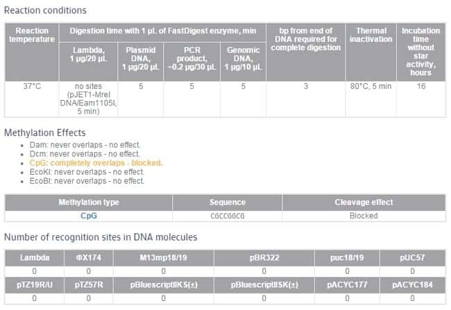 FastDigest MreI Thermo Fisher Scientific – Dna and Genes Worksheet Answers