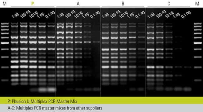 Robust multiplex PCR even with limited amount of DNA template