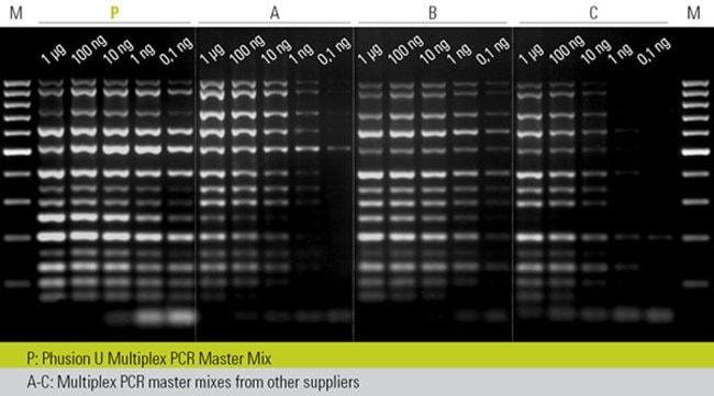 pcr template amount - phusion u multiplex pcr master mix thermo fisher scientific