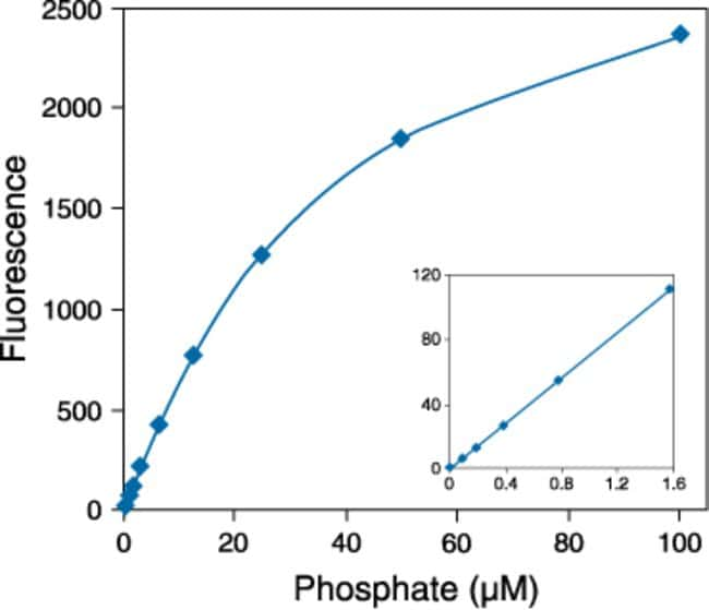 Detection of inorganic phosphate using the PiPer™ Phosphate Assay Kit (P22061). Each reaction contained 50 µM Amplex® Red reagent, 2 U⁄mL maltose phosphorylase, 1 mM maltose, 1 U