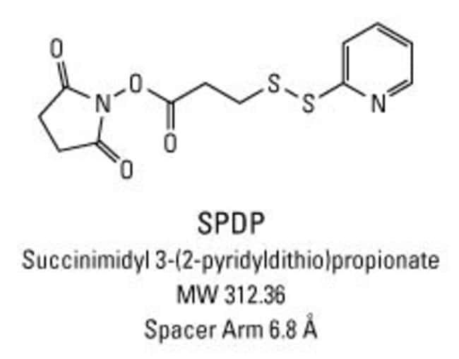 Chemical structure of SPDP crosslinking reagent
