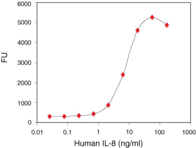Human IL-8 Recombinant Protein. Standard Curve.