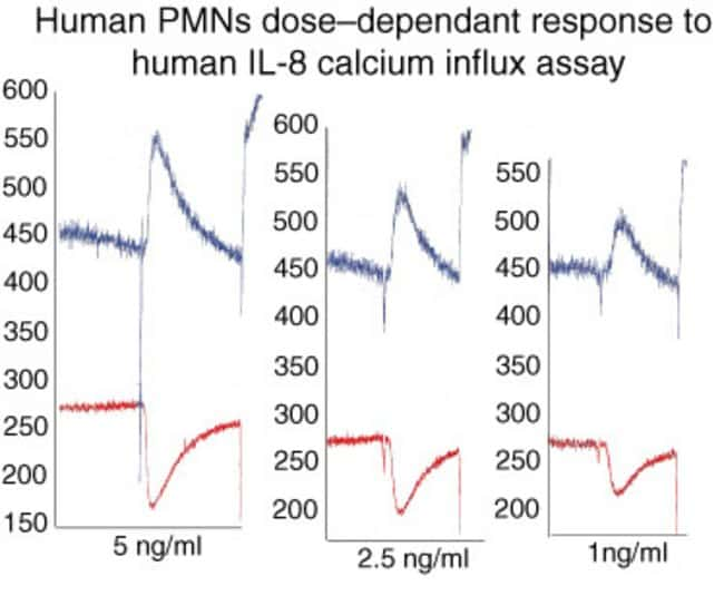 Chemotaxis. Human PMNs were freshly isolated from peripheral blood of normal donor by density gradient centrifugation and dextran sedimentation. Cells were fluorogenically labeled with BCECF-AM. Seria