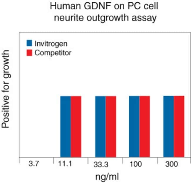 Human G-DNF Recombinant Protein.