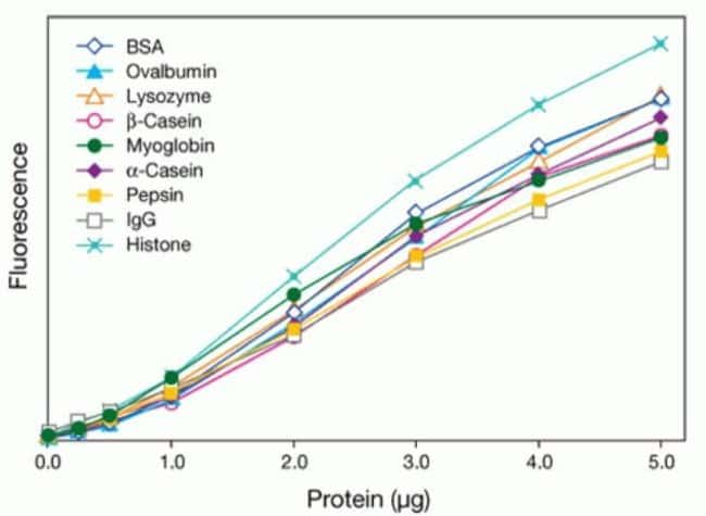 Low protein-to-protein variation in the Qubit® protein assay
