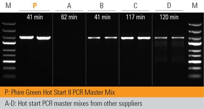 Superior yields in short time with master mix format