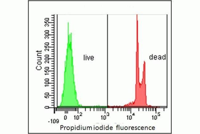 Propidium iodideReadyProbes® reagent
