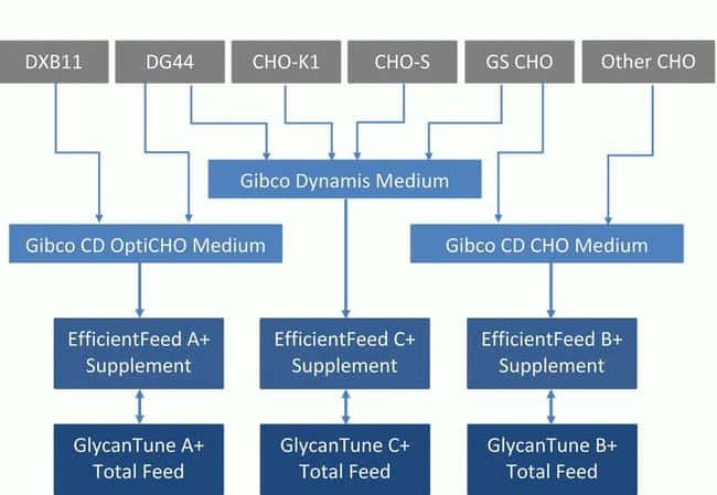 Product selection chart based on cell type
