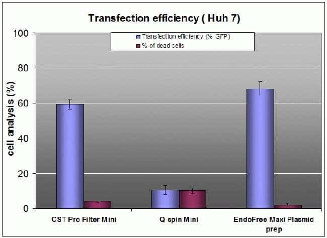 Transfection data for CST pro Filter Mini