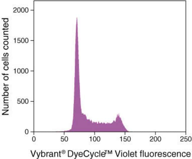 Vybrant® DyeCycle™ Violet Stain Histogram of live Jurkat cells stained with Vybrant® DyeCycle™ Violet stain showing DNA content distribution. G0/G1 and G2/M phase histogram peaks are separated