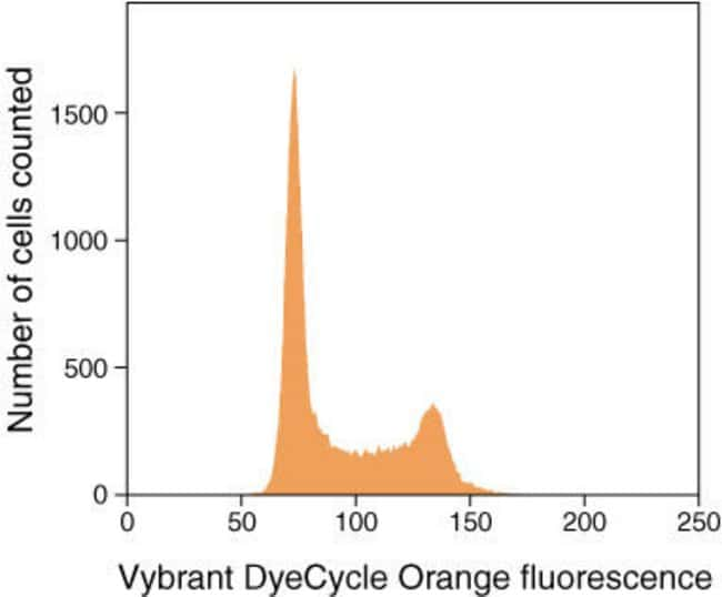 Vybrant® DyeCycle™ Orange Stain Histogram of live Jurkat cells stained with Vybrant® DyeCycle™ Orange stain showing DNA content distribution. G0/G1 and G2/M phase histogram peaks are separated