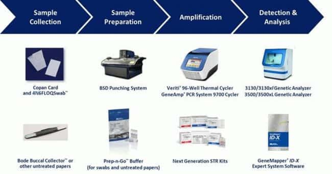 The complete integrated solution for efficient single source sample processing available from Life Technologies. Utilizing this workflow with the NGM SElect™ Express Kit enables laboratories to go fro