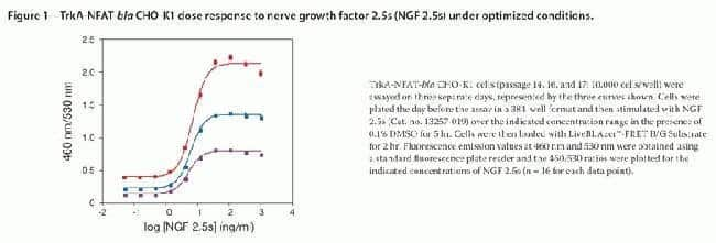 TrkA-NFAT-bla CHO-K1 Dose Response to Nerve Growth Factor 2.5s (NGF 2.5s) Under Optimized Conditions.
