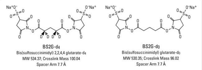 Structures of BS2G-d4 (left) and BS2G-d0 (right)