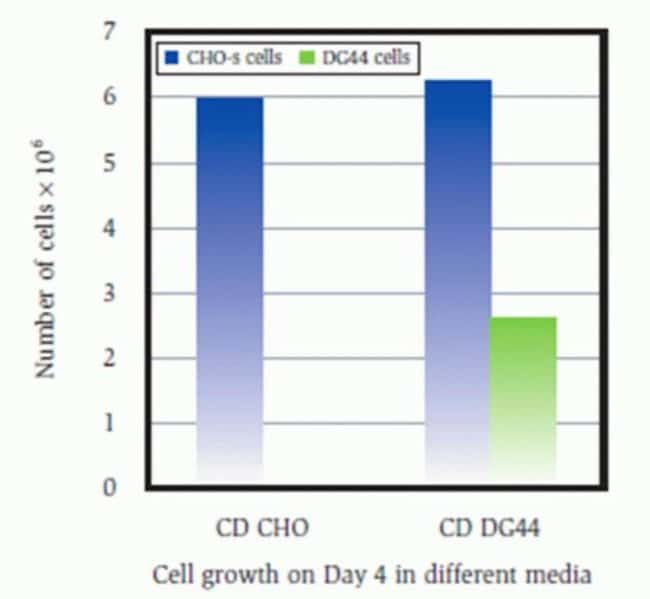 Comparison of Cell Growth of CHO-S and DG44 Cells in CD CHO or DG44 Medium