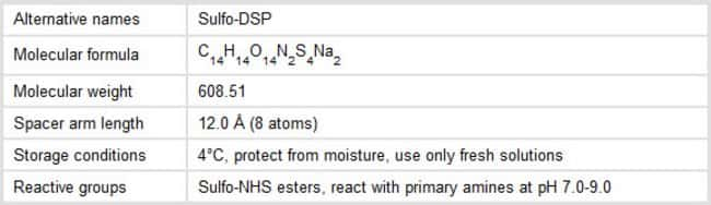 Properties of DTSSP
