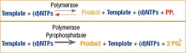 Use of Pyrophosphatase in preventing inhibition of nucleic acid synthesis by phyrophosphate