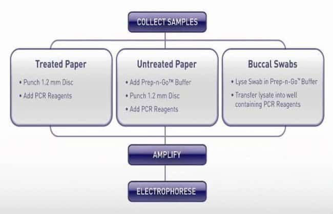 GlobalFiler Express workflow