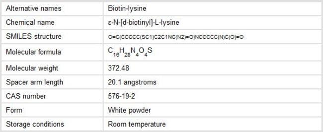 Properties of Biocytin