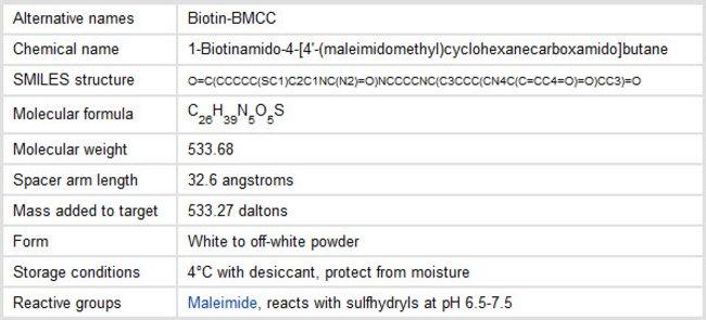 Properties of BMCC-Biotin