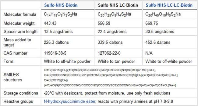 Properties of Sulfo-NHS-Biotin Labeling Reagents