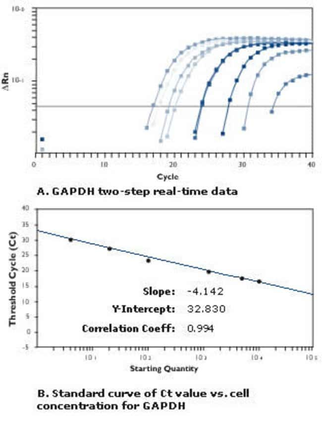 Cells-to-cDNA™ II is Compatible with Two Step Real-time RT-PCR