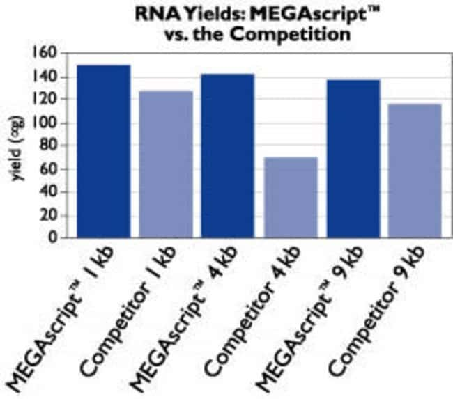 Mass Amounts of RNA Transcripts Produced by Two Distinct Transcription Systems